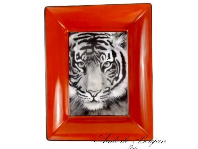 Vide poche Tigre de Thaïlande