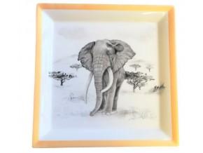 Vide poche Eléphant dans la savane